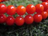Korál oranžový čínský - náhrdelník z kuliček 6