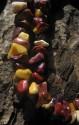 Mokait - náhrdelník krátký ze sekaných kamenů