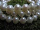 Perly smetanové říční - náhrdelník krátký 7