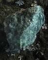 Fuchsit - surový kámen
