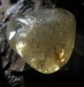 Citrín - omletý kámen