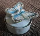 Svíčka - motýl bleděmodrý