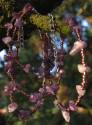 Ametyst - náhrdelník s náramkem