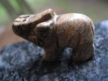 Jaspis obrázkový - slon